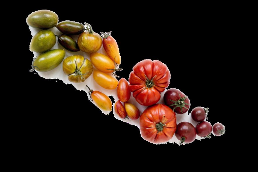 Biofolie voor groenten en fruit